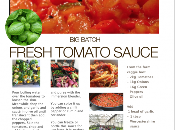 Recipes from your veggie bag – Fresh Tomato Sauce