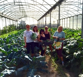 The Relleu Self Sufficiency Project